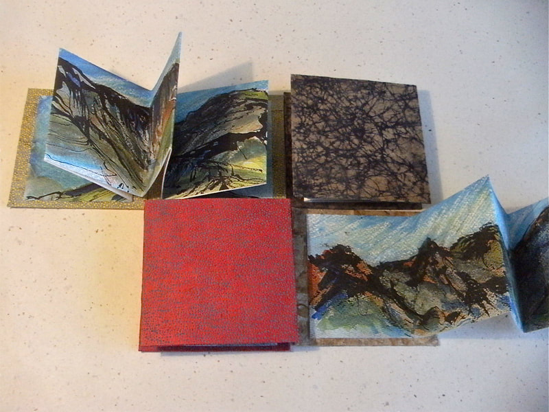 Group of Annie's handmade pocketbooks and concertina sketchbooks with her artwork inside